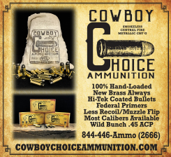 choice ammunition